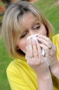 1181477_sneeze